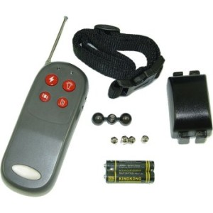 Uses-Of-A-Remote-Dog-Training-Collar-2988